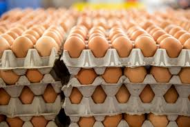 eggs-stacked-images