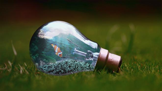 light-bulb-nero-neo-pixabay_1129247_1920